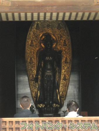 薬師寺:東院堂 聖観音立像
