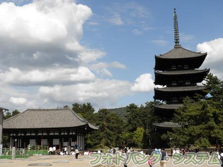 興福寺:東金堂と五重塔