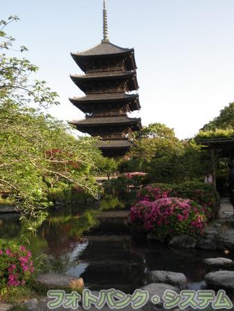 東寺(教王護国寺):庭園と五重塔