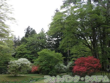 日光田母沢御用邸:庭園①