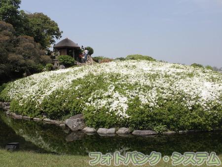 岡山―後楽園・唯心山