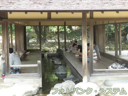 岡山―後楽園・流店の渓流